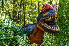 Dinosaur World 07 Plant City Florida