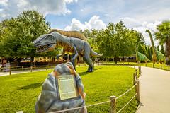 Dinosaur World 12 Plant City Florida