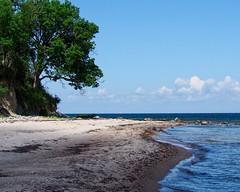 Empty Baltic Sea beach on Fehmarn | June 22, 2020 | Fehmarn Island - Schleswig-Holstein - Germany