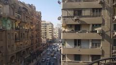 Egypt: Ars Electronica Garden