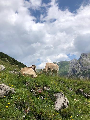 2020-Alpen-Hirschegg - 31