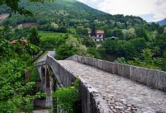 Goat Bridge, Sarajevo