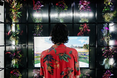 Canada: Ars Electronica Gardens