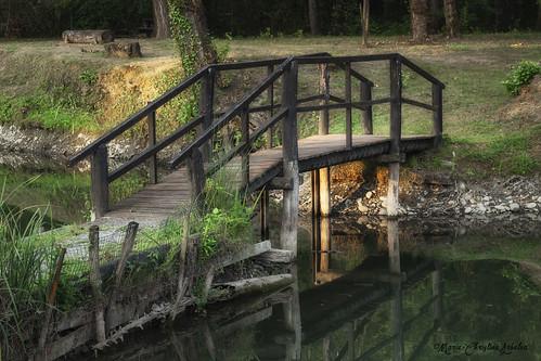 Le petit pont de bois du Lacot