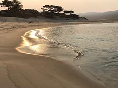 Carmel River Beach/early morning