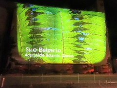 Karoonda in the Murray Mallee. Night illumination on the Karoonda wheat silos. Art work  from the SA Living Artists exhibition of August 2020. Illuminations nightly to 9 pm. Changed monthly. Australian tree fern fronds...