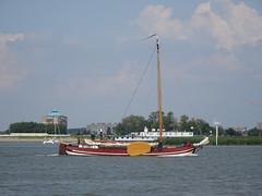 Zeilboot 16-8-20