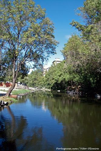 Rio Dão - Alcafache - Portugal 🇵🇹