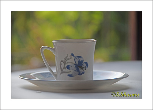 White cup of tea isolated.