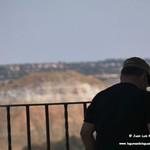 Aves en el Paseo del Norte de La Guardia (Toledo) 23-8-2020