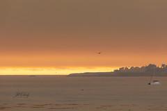 Smokey Sunset at Santa Cruz Harbor
