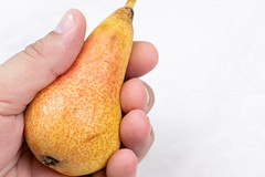 Pear in the hand with copy space above white background
