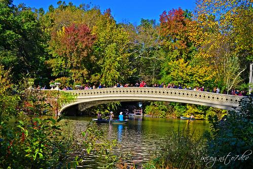 Beautiful Bow Bridge & The Lake Central Park Manhattan New York City NY P00630 DSC_1390