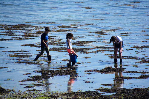 A la pêche Bretagne _2274