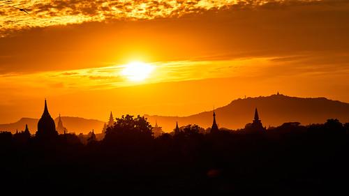 Burmese Golden Sunset
