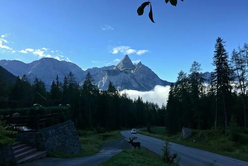 AT Ehrwald am Morgen
