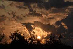 sunset  août 2017