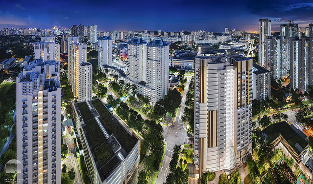 Singapore Concrete Jungle