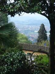 Firenze - Colline