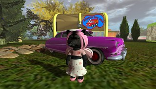 Dinkie Boutique fashion and Night's Toy Box car