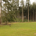Natuurbegraafplaats'20E (18 van 20)