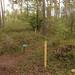 Natuurbegraafplaats'20E (13 van 20)