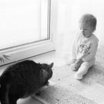 Animal Life  (AE-1  /  Kodak 5222)
