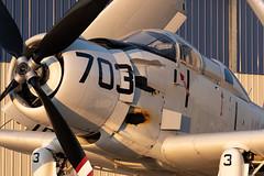 Douglas AD-5W / EA1-E Skyraider