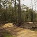 28-08-2020 Opening natuurbegraafplaats Elspeterbos