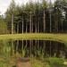 Natuurbegraafplaats'20E (19 van 20)