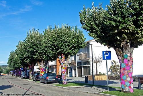 Avenida das Tílias - Sernancelhe - Portugal 🇵🇹