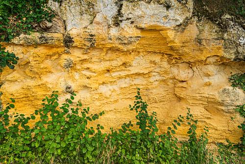 15-Paroi calcaire