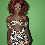 Honey Davenport Leopard Print-121