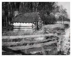 Cabin in Late Winter