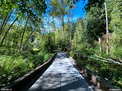Mill Creek Nature Reserve