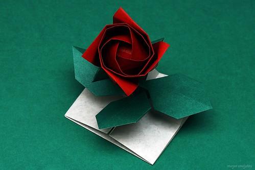Origami Rose-tubular (Toshikazu Kawasaki)