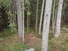 Ødegård Utfor, Ødegård Park, Askim, Indre Østfold, Viken, Norway