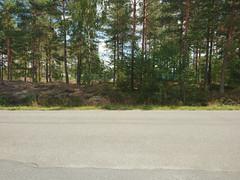 Røtter & Stein, Ihlen, Askim, Indre Østfold, Viken, Norway