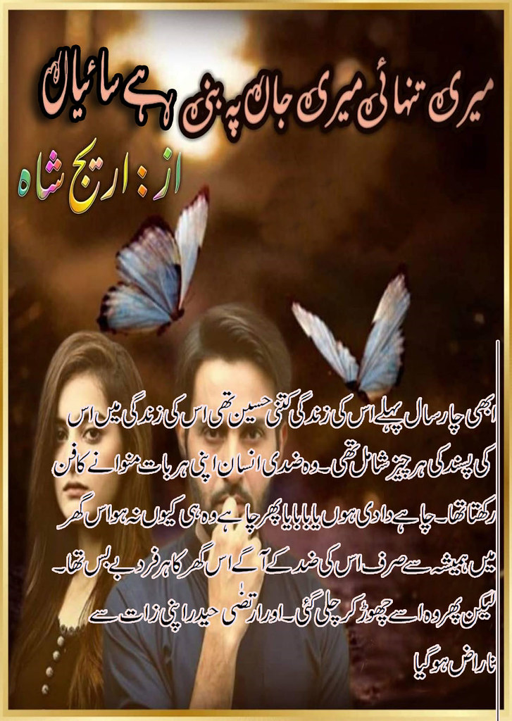 Meri Tanhai Meri Jaan Pe Bani Hai Saiyan Complete Urdu Novel By Areej Shah,Meri Tanhai Meri Jaan Pe Bani Hai Saiyan is a very famous urdu social and romantic novel by Areej Shah