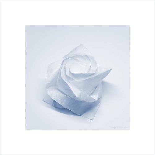 Origami New Rose (Toshikazu Kawasaki)
