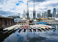 Rowing Boats, Millwall Dock