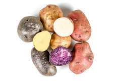 Fresh potatoes of different varieties and colors on white, top view