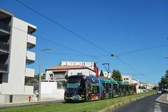 Alstom Citadis 402 n°2072  -  Montpellier, TaM