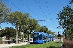 Alstom Citadis 401 n°2019  -  Montpellier, TaM