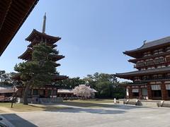 yakushiji_20200404150139