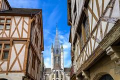 Maisons de Dijon