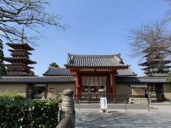 yakushiji_20200404145333