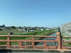 yakushiji_20200404144547