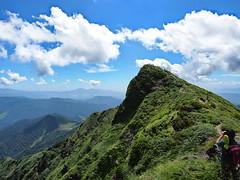 Tomanomimi, Mt. Tanigawadake