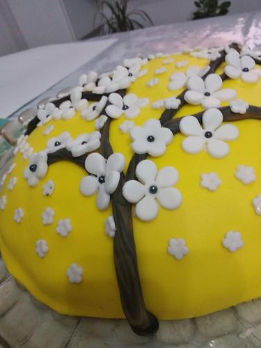 Torta mimosa (1)